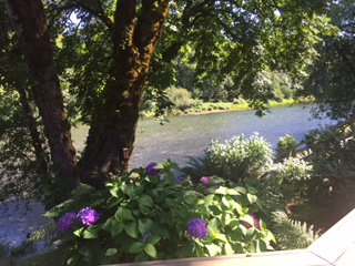 Beautiful view of the Mckenzie River